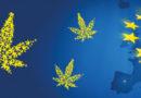 Czy medyczna marihuana będzie dostępna w całej Unii Europejskiej?
