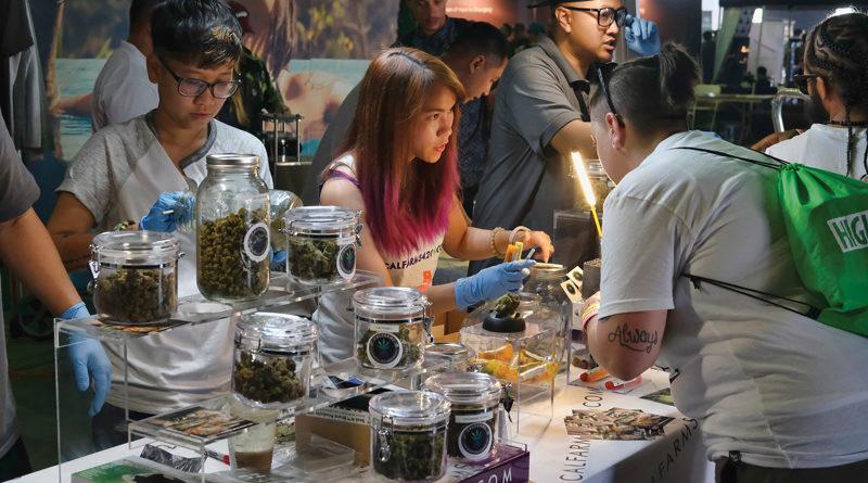 Top 5 mocarstw marihuany
