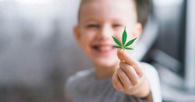 Marihuana medyczna w neurologii dziecięcej