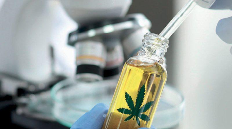 Poziom THC to nie wszystko